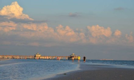 Island hopping in Fort Myers, Sanibel and Captiva