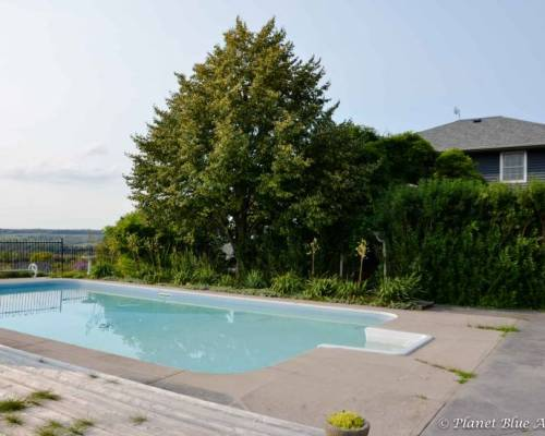 Resting House B&B swimming pool