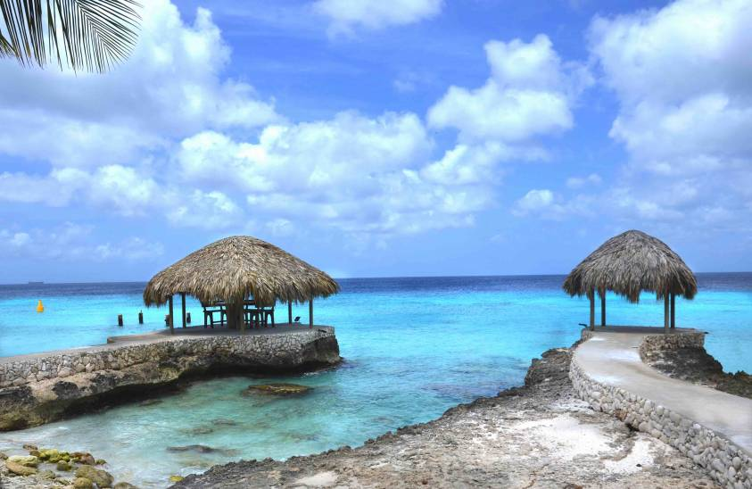 8 Reasons Why You Should Visit Bonaire