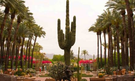 Day-cation in The Desert at Hyatt Regency Scottsdale Resort and Spa at Gainey Ranch
