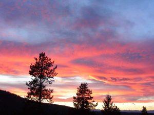 Awakening Sunset
