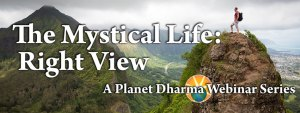 The Mystical Life webinars on right view