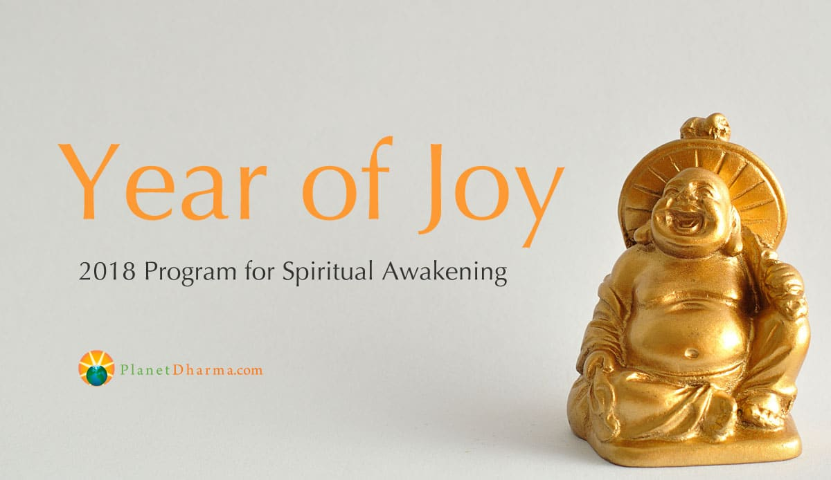 Year of Joy, spiritual awakening program 2018, cultivating joy