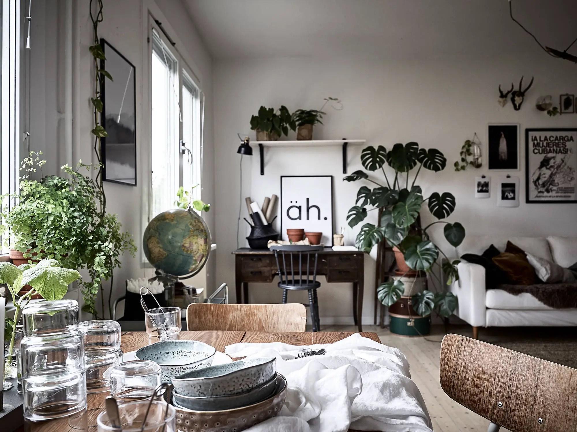 Un appartement envahi par les plantes