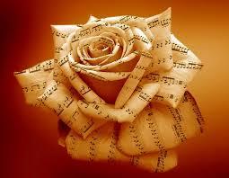 rose-muique-reiki-fleurs