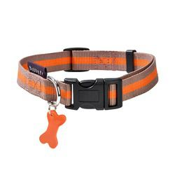 collier pour chien taupe orange arlequin bobby france