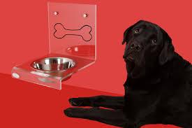 Terrines et Pâtées pour chien