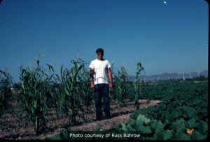 Russ Buhrow standing in his field