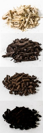 Toasted wood, from top to bottom: raw wood chips, torrefied wood pellets, biochar from wood pellets.  Biochar is produced at a higher temperature than torrefied  wood and has a lower energy content.