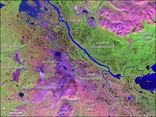False-color image of Norilsk, Siberia, Russia. Shades of pink and purple indicate bare ground: rock formations, cities, quarries, and places where pollution has damaged the vegetation. Brilliant greens show predominately healthy mixed tundra-boreal forest. The deep and pale pinks downwind of the city, as well as the deep purple in the hillsides immediately outside Noril'sk, are moderately to severely damaged ecosystems. (Source: Jesse Allen, NASA Earth Observatory, using data obtained from the University of Maryland's Global Land Cover Facility)