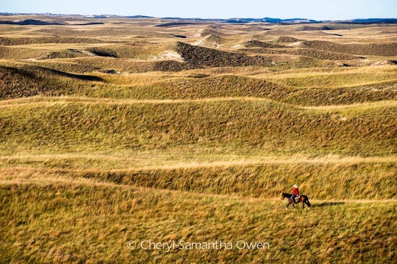 Aaron Price, a Save the Sandhills board member, rides a horse over the sandhill dunes. (Image: Cheryl-Samantha Owen)
