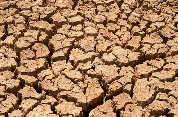 Cracked earth typical of drought conditions. (Image Credit: CSIRO)