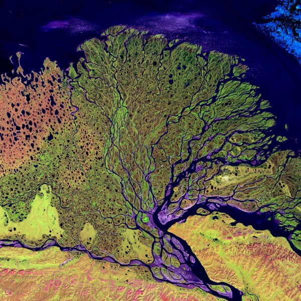 Lena River Delta on the Laptev Sea. The Lena Delta Reserve is the most extensive protected wilderness area in Russia. (Credit: NASA Goddard Space Flight Center)