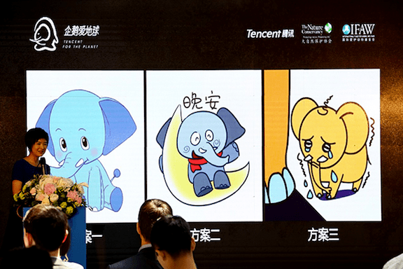 The host, Quanling ZHANG, one of the most famous TV anchor in China, launches the public vote for project-themed elephant Wechat emoji. (Image Credit: IFAW)