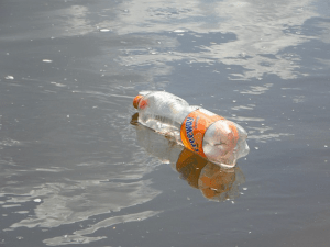 A discarded plastic bottle floats in a river. (Image Credit: Pixabay)