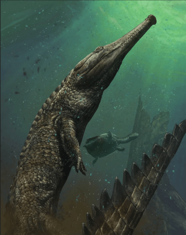 "A rendering of M. rex by target=""_blank"">Davide Bonadonna. (Image courtesy of the artist.)"