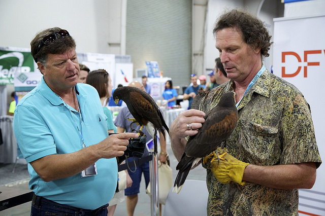 """Men Who Stare at Hawks (though the technical term is """"falconer""""). (Photo Credit: Rick Baraff)"""