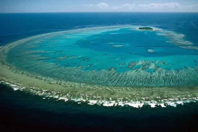 Great Barrier Reef. (Photo Credit: Lock the Gate Alliance / Flickr)