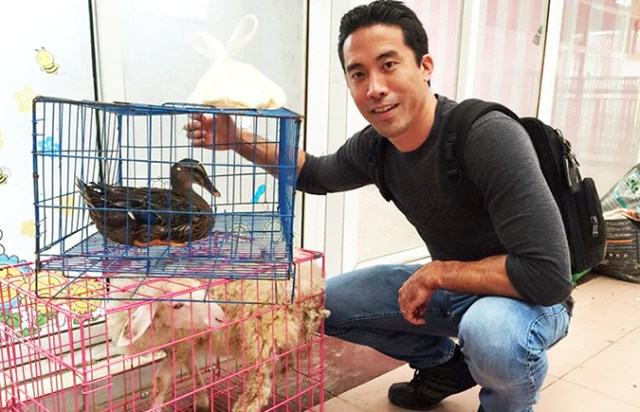 Marc Ching with the rescued duck and lamb. (Photo courtesy of Animal Health and Wellness Foundation)