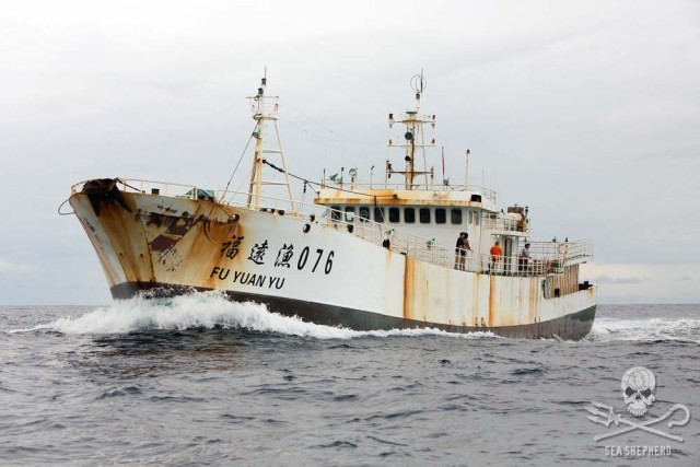 The Fu Yuan Yu 076. (Photo Credit: Tim Watters via Sea Shepherd)