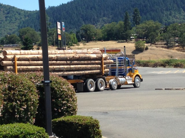 Another logging truck. (Photo Credit: Nick Marinoff)