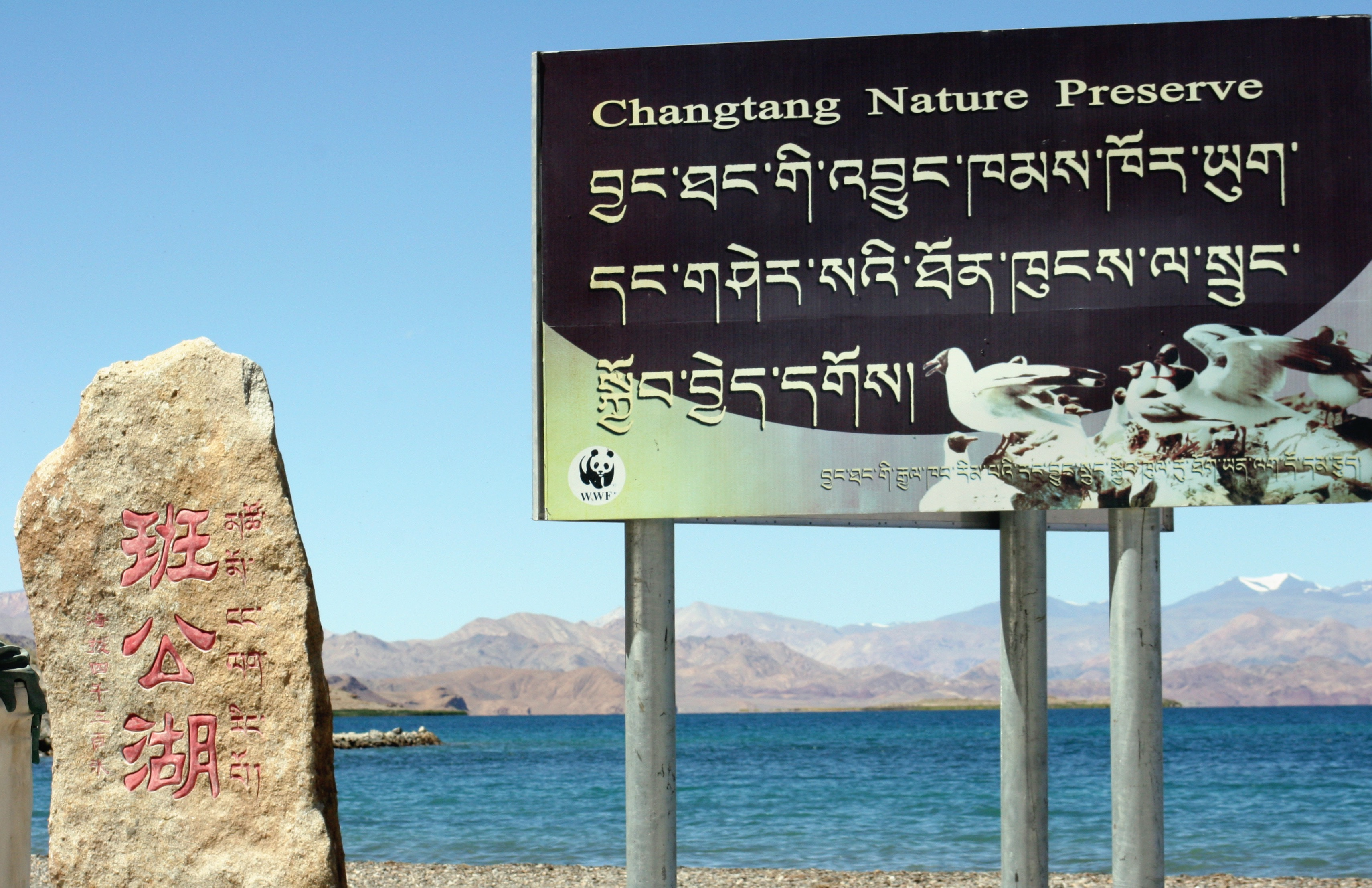 The vast Changtang Nature Preserve has some WWF and Conservation International involvement.