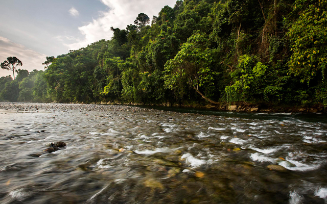 A river system within the protected Leuser Ecosystem. (Photo: Paul Hilton)