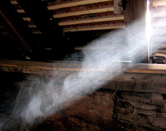 Dust photographed in a sunbeam. (Photo Credit: E.mil.mil / WikiMedia Commons)