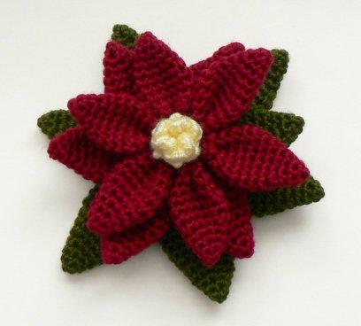 Kerstster bloem