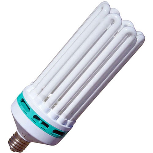 Full Spectrum Fluorescent Light Bulbs