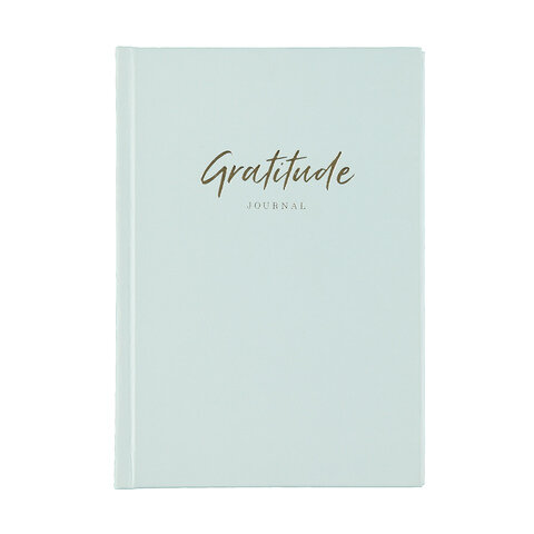 Keeping a gratitude journal can help you remember the positive elements of your life