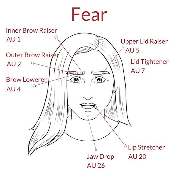 Expression of Fear