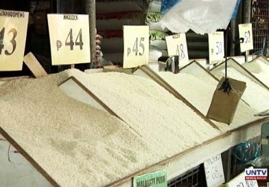 Commercial rice prices seen to go down in November