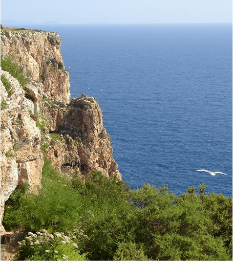 Panorama a la Mola