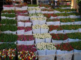 14mercato-dei-fiori-particolare2