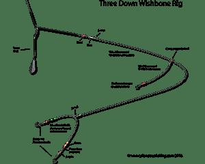 three down wishbone rig