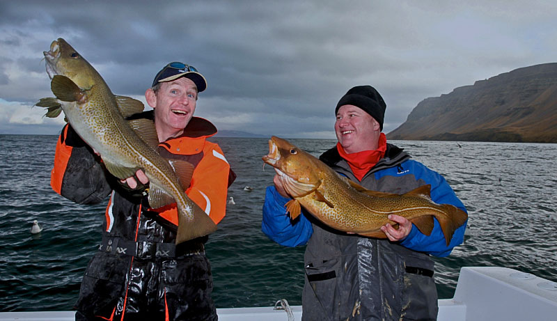 Les and Stuart with cod caught in Iceland