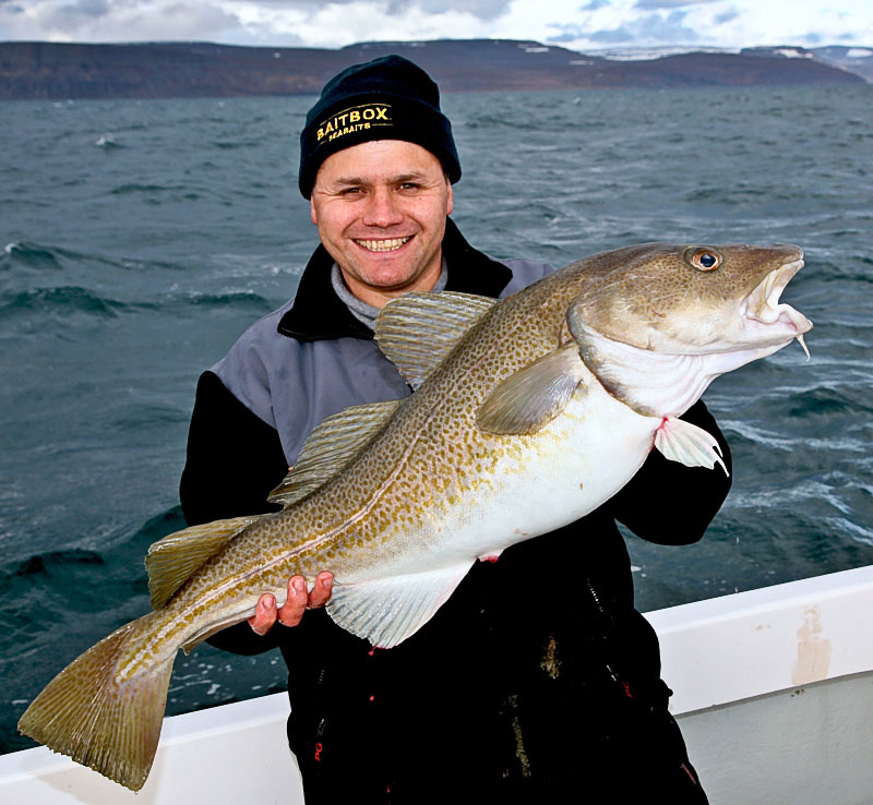 Steve Souter with a cod caught in Iceland
