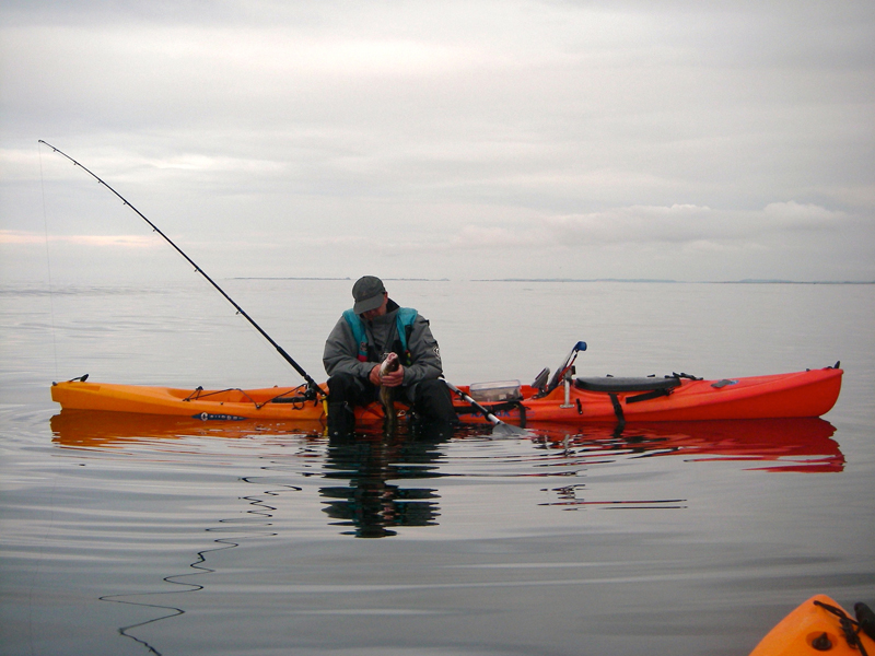 a kayak angler with a fish in flat calm seas