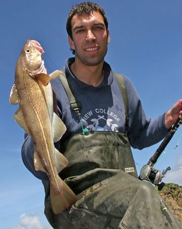 A Marine Drive cod held by angler