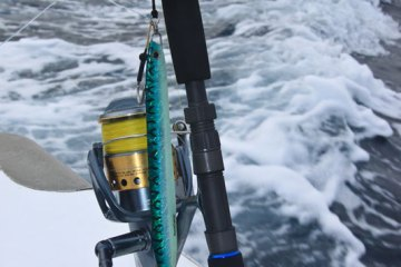 the butt and reel seat on the Fox Jig Trek and XT rods