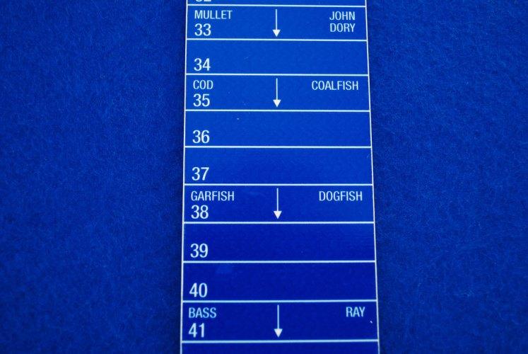 TKR Fishing Ruler fish sizes