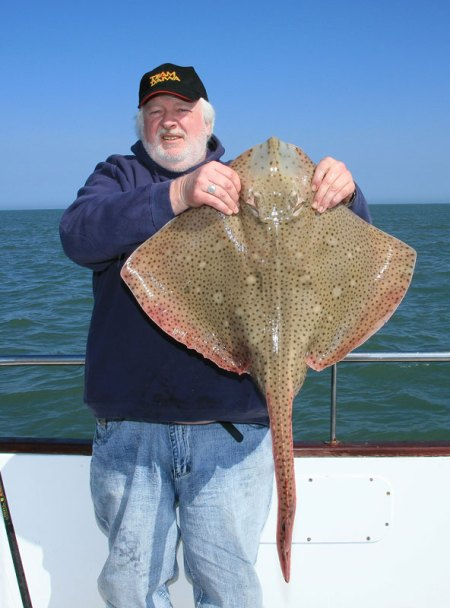 a blonde ray from the boat