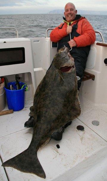 a giant Vannoya halibut