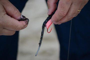 Step 5 - Black Squid Bait