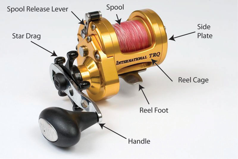 Sea Angling for Beginners - Multiplier Reels annotated