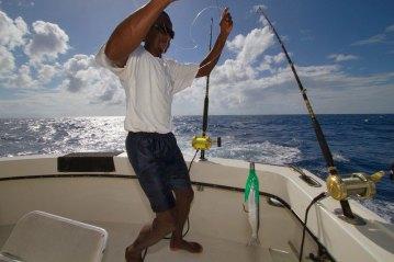 Antigua Fishing rigging bait