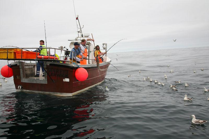shetland boat fishing