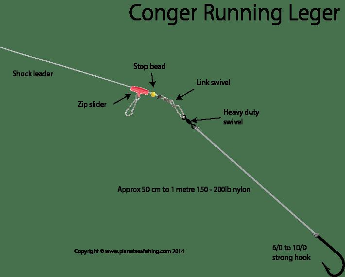 Shore Conger Running Leger Rig