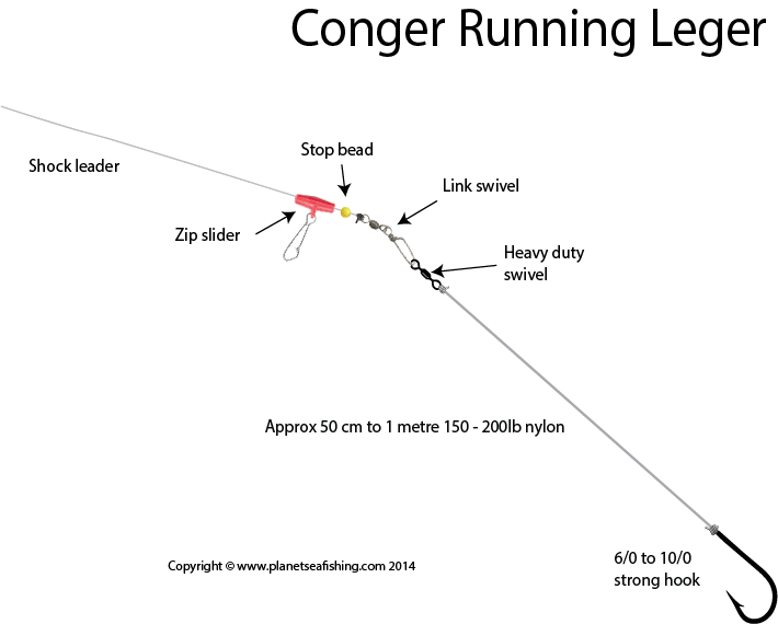 How to Tie a Conger Running Leger